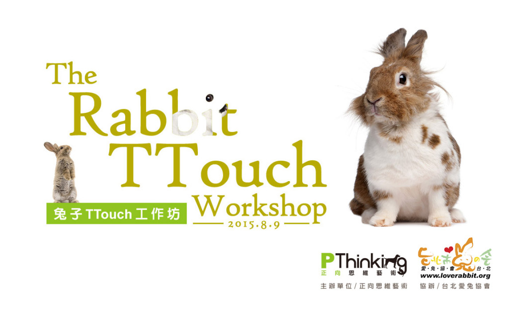 2015 兔子TTouch工作坊