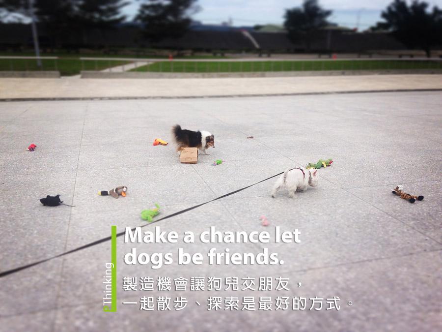 製造機會讓狗兒交朋友