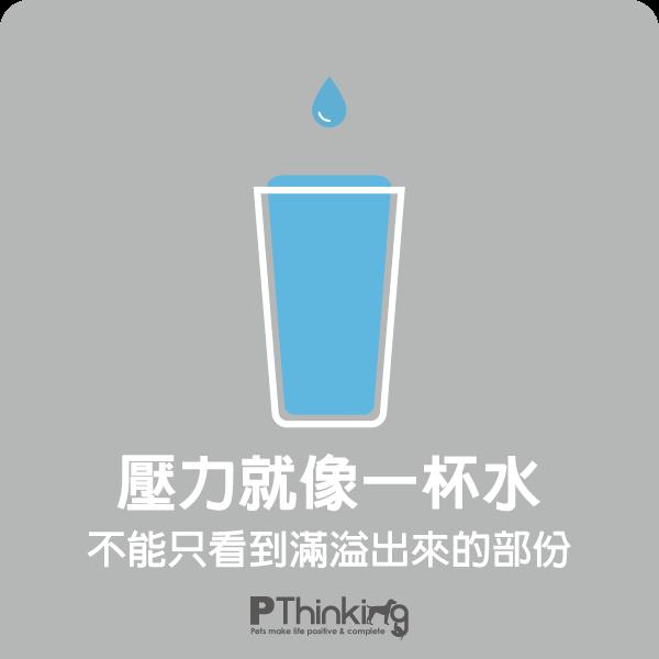 壓力就像一杯水,超過限度就會爆發行為